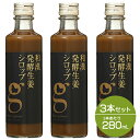 クーポン配布中!【セット】北海道アンソロポロジー 和漢発酵生姜シロップ 280mL 3本セット ip10