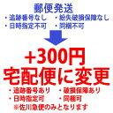 その他 郵便発送より 宅配便に変更します/300円...