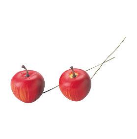イミテーション アーティフィシャルフルーツ アップル