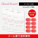 【メーカー正規品】スリムデボーテ専用交換用ゲルパッド3箱(交換6回分)/Slim de Beaute PAD 《送料無料》