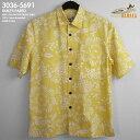 5691-sun-main