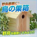 鳥の巣箱 A 工作キット / 夏休み 自由工作 自由研究 手作り 工作 低学年 高学年 小学校 木工