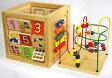 名入れ無料 森のあそび箱 知育玩具 1歳 2歳 木のおもちゃ 型はめ 木製 パズル ビーズコースター ルーピング 名入れ 名前入り 木製玩具 出産祝い