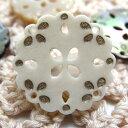 貝や水牛を使用したかわいい花模様のボタン 釦 BT-460 13mm