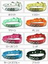 中・大型犬用の名前入り首輪【SL3号 42cm〜51cm】