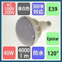 バラストレス水銀灯形 防水 LED電球 40W 4000lm 昼白色 E39