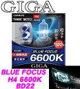 カーメイト GIGA BD22 H4 ヘッドライト/フォグランプ用ハロゲンバルブ ブルーフォーカス ...