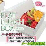 【メール便送料無料】FLAT LUNCH BOX plain フラットランチボックス プレーン ミニサイズ HO.H.(ホゥ!)【楽ギフ_包装】10P03Dec16