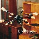 ペンダントライト【Bredeney】12灯 明るい デザイナーズ 照明 アンティーク レトロ ヴィンテージ 北欧 おしゃれ ブラック 店舗