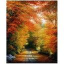 クロスステッチ刺繍図案 Mystic Stitch - Autumn In New England