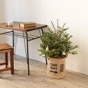 クリスマスツリー モミの木 70cm 麻のポット付き 生もみの木 あす楽 クリスマス Xmas ツリー コニファー 常緑針葉樹 お庭へ植え替えOK (メール便不可) 3000円以上 送料無料