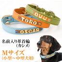 犬の首輪 犬首輪 小型犬中型犬用名前入りレザー首輪カシメ Mサイズイニシャル首輪【楽ギフ_包装】【楽ギフ_名入れ】