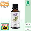 ユーカリ 精油 [30ml] 正規輸入品【あす楽】【コンビニ受取対応】now eucalyptus