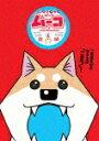 【ポイント10倍】テレビアニメ いとしのムーコ 03 (100分)[PCBP-12298]【発売日】2016/5/18【DVD】