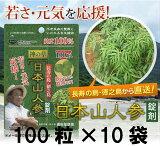健康 サプリ エイジングケア 美容 ダイエット【】日本山人参錠剤 10袋セット(ヒュウガトウキ)