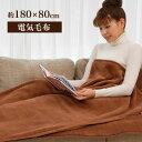 電気毛布 敷き シングル 180×80cm らく寝ぼう 洗え