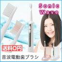 電動歯ブラシ 音波歯ブラシ 電動 歯ブラシ 充電式 超音波 ハブラシ 替えブラシ 音波振動歯ブラシ 音波式電動歯ブラシ tb-500 ドリテック ピンク