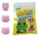 カムカム フレッシュキシリトールグミ グレープ味 1袋(12粒)【MB】