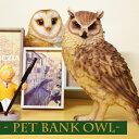 【あす楽対応】 ペットバンク オウル / PET BANK OWL [フクロウ置物 貯金箱 フクロウ ふくろう フクロウ雑貨 ふくろうグッズ オブジェ 置物 動物 かわいい]