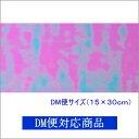 【DM便対応商品】透明ホログラムシート 1/2サイズ オーロラ(無色透明)【ホログラムシール】