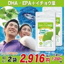 DHAイチョウ葉プラス (約80日分) DHA EPA イチョウ葉 大豆レシチン ビタミンE入 サプリメント 80粒入2袋 1袋40日分でお得 送料無料 dha epa サプリメント 大日ヘルシーフーズ直販