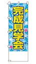 【名入れ】不動産のぼり旗「完成見学会」 名入れ 5枚セット