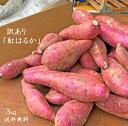 【送料無料】訳ありさつまいも3kg 熊本県産 紅はるか お買い得 数に限りがございま