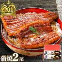 お中元 うなぎ 長蒲焼2尾セット 鰻 ギフト 食べ物 プレゼ...