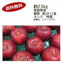 【送料無料】紅玉 りんご 約2.5kg 個数 10-11玉 ランク 特撰★一部、北海道、沖縄のみ別途送料が必要となる場合があります