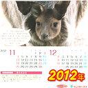 【メール便にて送料無料♪】防水加工で濡れても平気っ!!『お風呂カレンダー(2012年版)』