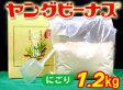 【にごり】ヤングビーナスにごり湯(徳用1.2kg)【製造:ヤングビーナス薬品工業】【明礬の花姉妹品】【YoungVenus Co.,Ltd】