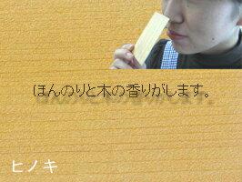 【送料無料♪】秋田の印刷屋さんが作る木の名刺(...の紹介画像3