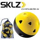 【練習器具】スキルズ インパクトゴルフボールSKLZ IMPACT GOLF BALL SKMGNT26 【0824楽天カード分割】