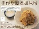 ミニトマト 250g <北海道 熊本県産 他>【クール便】