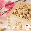 送料無料 国産 煎り大豆 7kg(7kg x1)袋入り 九州産 豆まき 豆まき用 焙煎大豆 豆 炒り豆 煎