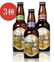 送料無料 鳥取 地ビール ビール 6本 セット 大山Gビール...