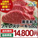 送料無料 ヒレステーキ ヒレ肉 鳥取和牛 500g フィレス...