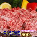 ショッピングホットプレート 牛柔らかハラミ焼肉 500g【250g×2】バーベキュー用 美味しい 焼肉 ハラミ 訳あり お徳用 お弁当 おかずに ホットプレート で焼肉 お中元 の1品に。