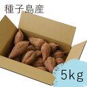 種子島産熟成安納いも(Mサイズ) 5kg...