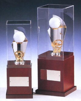 Trophy: trophy ゴルフホールインワン (278 mm height) BT45-B