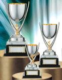 ゴルフ専用優勝カップ:持ち回りカップ(高さ240x口径80mm)PS1164B【文字彫刻無料】【】[M/K7]