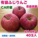 【訳あり】青森県産有袋ふじりんご 40玉 約10kg 送料別途必要 【RCP】