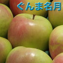 りんご 10Kg 送料無料 青森県産 ぐんま名月 秀品 10kg 幻の りんご 青森 ぐんま 名月