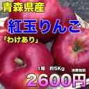 【わけあり★送料無料】青森県産紅玉りんご 約5kg 昔懐かし...
