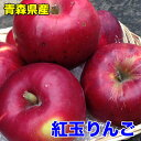 【わけあり★送料無料】青森県産紅玉りんご 約18kg 昔懐か...