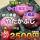 【特別セール】秋田県産やたかふじ 約10kg サイズ指定不可 【RCP】