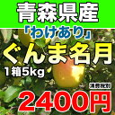 【わけあり】青森県産ぐんま名月 約5kg 幻のりんごの訳ありりんご サイズ不揃い 2400円 【RCP】