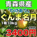 【わけあり】青森県産ぐんま名月 約10kg 幻のりんごの訳ありりんご サイズ不揃い 3400円 【RCP】