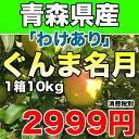 【わけあり】青森県産ぐんま名月 約10kg 幻のりんごの訳ありりんご サイズ不揃い【RCP】
