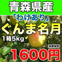 【わけあり】青森県産ぐんま名月 約5kg 幻のりんごの訳あり...